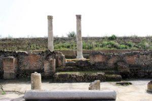 archeomusica sibarislide05 300x200 - archeomusica_sibarislide05
