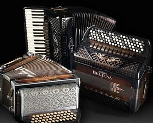 Calabria's Accordion Quintet